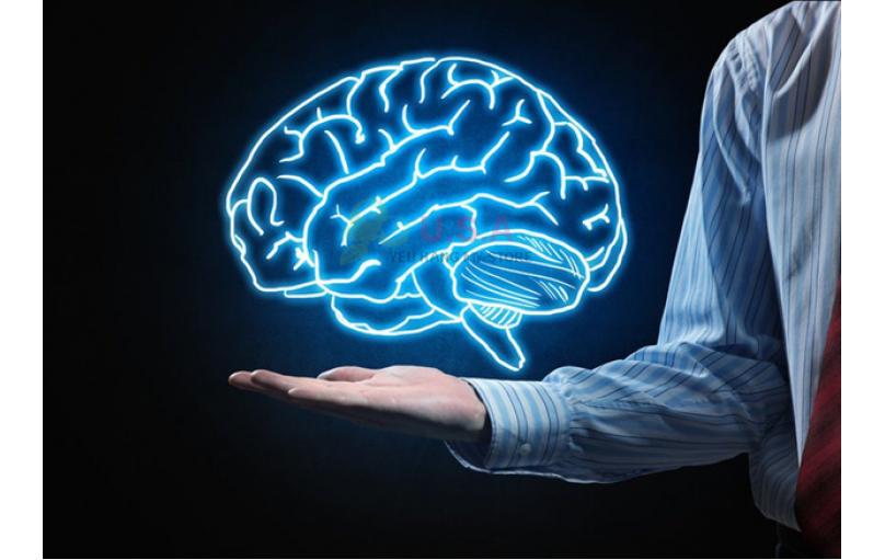 5 Cách Để Tăng Sức Mạnh Não Bộ Và Cải Thiện Trí Nhớ